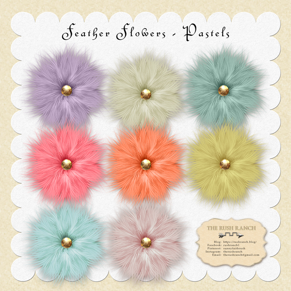 Rushranch-feather-flowers_pastels