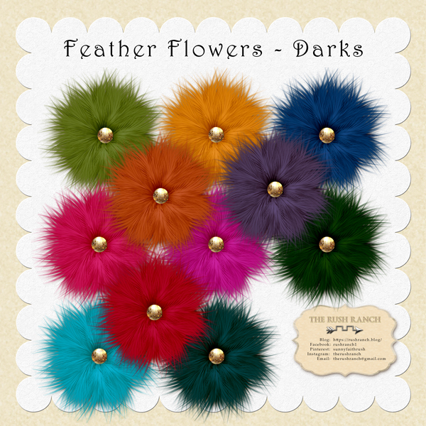 rushranch_feather-flowers_darks