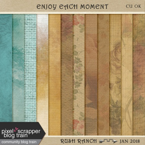 PSFeb2018_enjoy-each-moment_papers