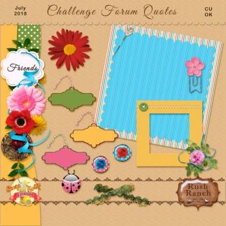 rr_jul2018_challenge_cu