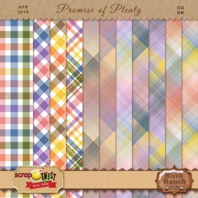 STBT_apr19_rr_promise_plaid